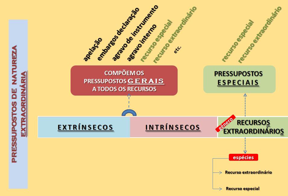 Pressupostos gerais e especiais dos recursos - Extrínsecos e Intrínsecos - Prof Alberto Bezerra