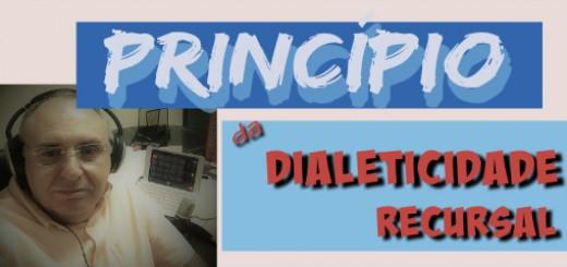 principio da dialeticidade recursal significado